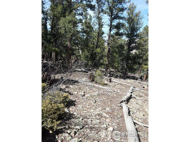 806 Middle Fork Vis, Fairplay, CO 80440 (MLS #873287) :: 8z Real Estate