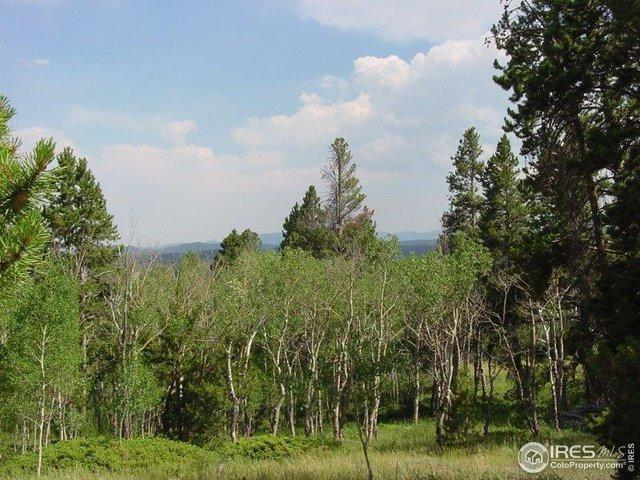 1294 Osage Trl, Red Feather Lakes, CO 80545 (MLS #874389) :: 8z Real Estate