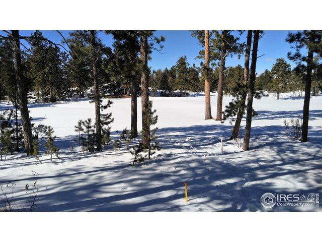 1931 E Fox Acres Dr, Red Feather Lakes, CO 80545 (MLS #874394) :: Kittle Real Estate