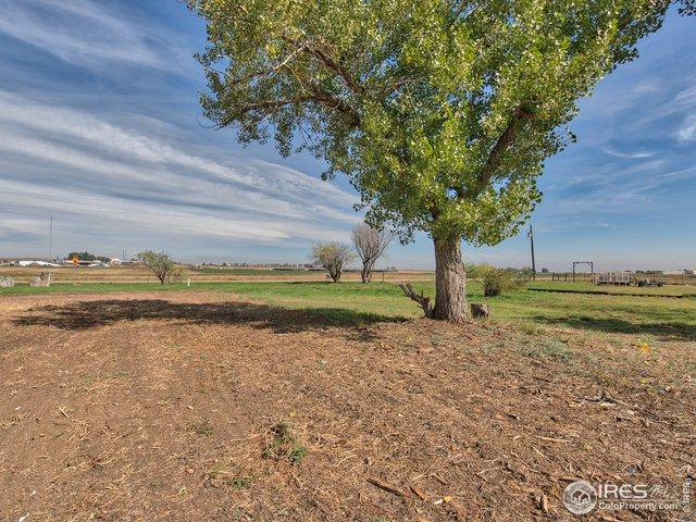 3171 County Road 6, Erie, CO 80516 (MLS #874418) :: 8z Real Estate