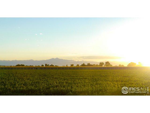 16876 Cattlemans Way, Greeley, CO 80631 (#874782) :: The Peak Properties Group