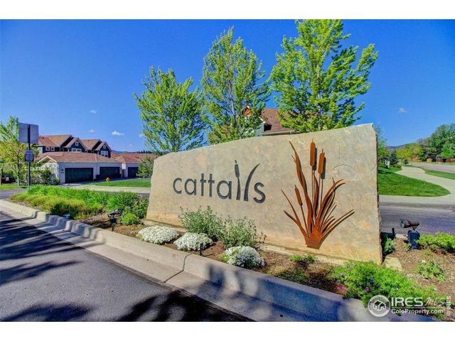 9781 W Indore Dr, Littleton, CO 80128 (#875124) :: The Peak Properties Group