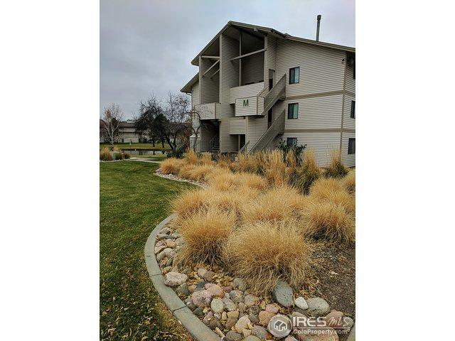 1705 Heatheridge Rd M202, Fort Collins, CO 80526 (MLS #875194) :: Hub Real Estate