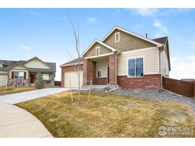 6122 Washakie Ct, Timnath, CO 80547 (MLS #875197) :: 8z Real Estate
