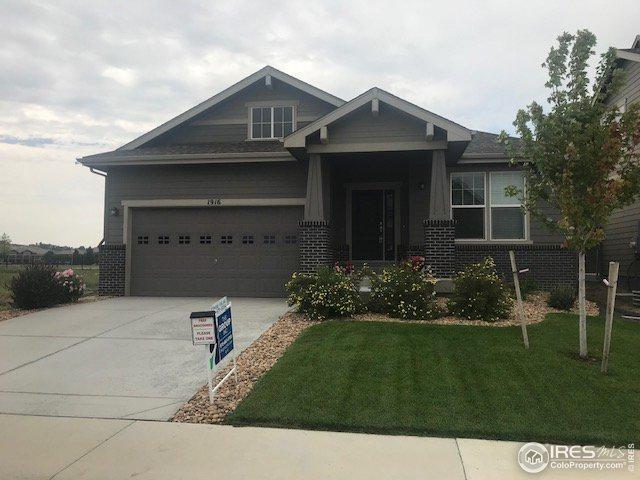 1916 Los Cabos Dr, Windsor, CO 80550 (MLS #875498) :: Colorado Home Finder Realty