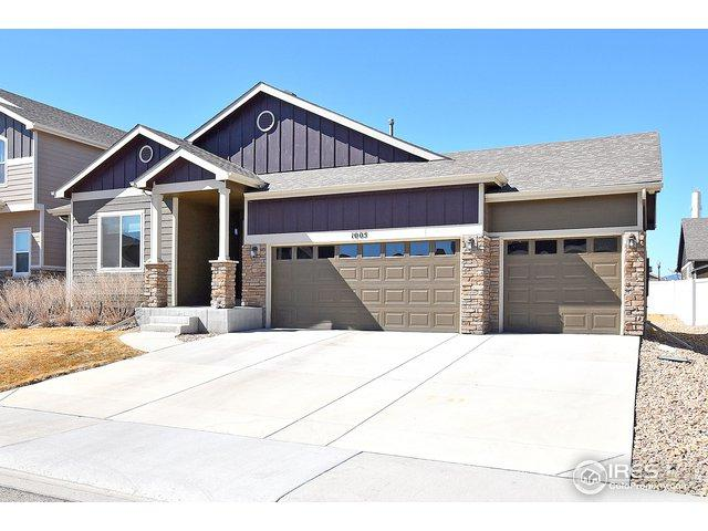 1005 Lepus Dr, Loveland, CO 80537 (MLS #875581) :: Tracy's Team