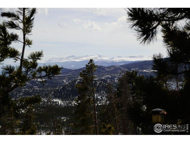 35 Concho Ct, Red Feather Lakes, CO 80545 (MLS #876090) :: Kittle Real Estate