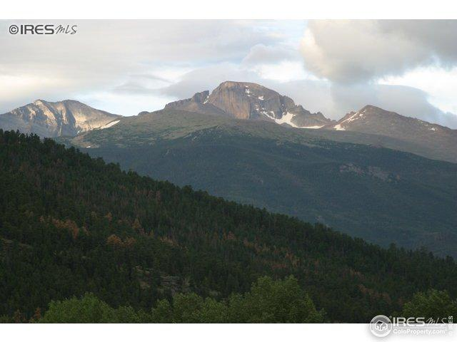1565 Highway 66, Estes Park, CO 80517 (MLS #876915) :: Tracy's Team