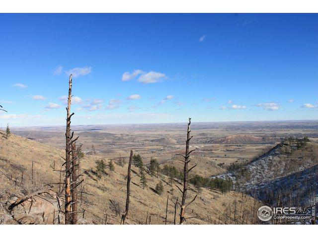 0 Pine Acres Way, Bellvue, CO 80512 (MLS #877234) :: Downtown Real Estate Partners