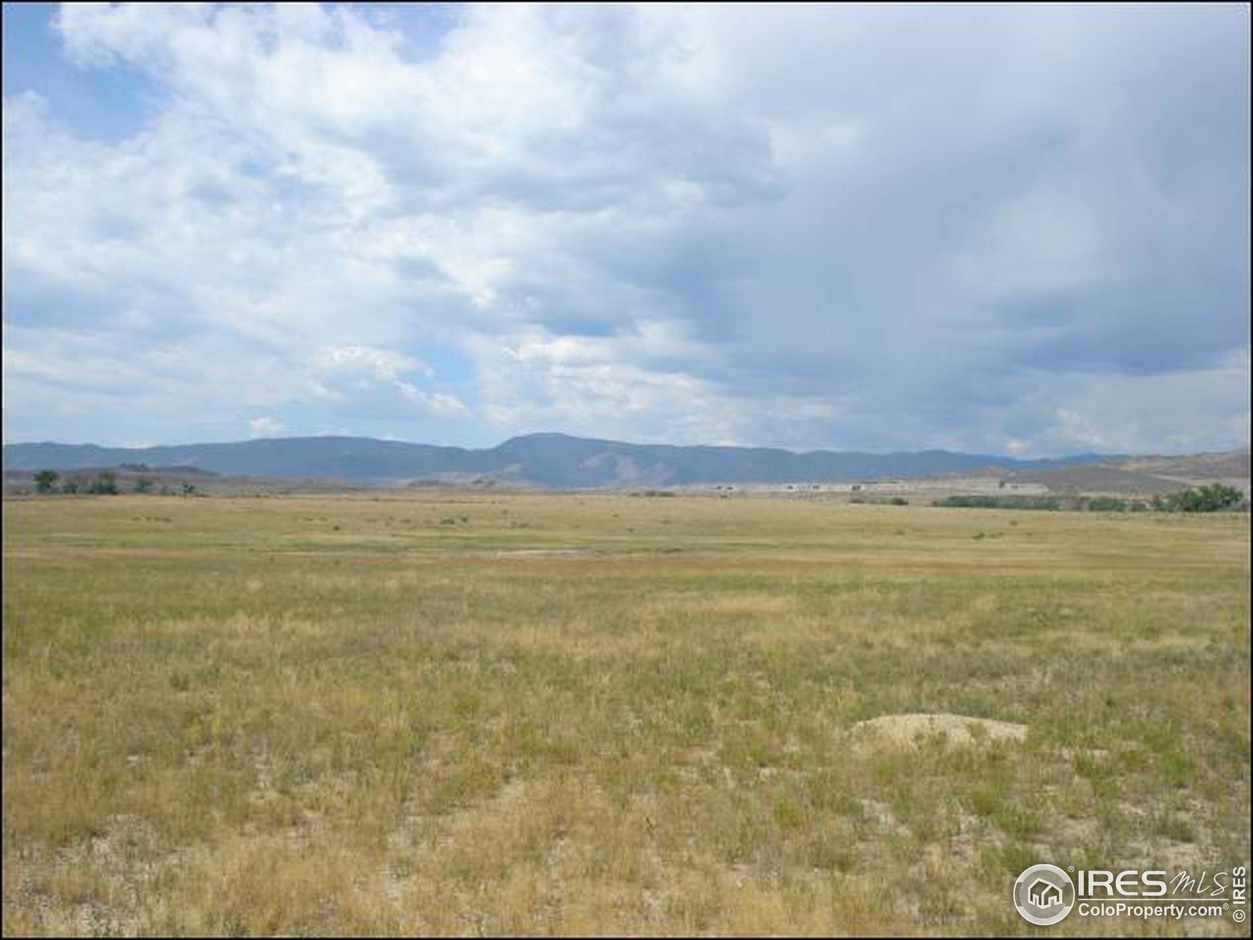 5014 Fox Hill Dr, Longmont, CO 80504 (MLS #877240) :: 8z Real Estate