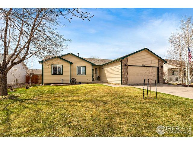 3376 Mammoth Cir, Wellington, CO 80549 (MLS #877524) :: Tracy's Team