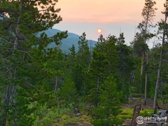 510 Carrier Way, Red Feather Lakes, CO 80545 (MLS #877536) :: Kittle Real Estate
