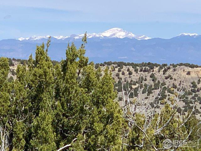 7905 Soda Creek Rd, Pueblo, CO 81005 (MLS #878133) :: June's Team