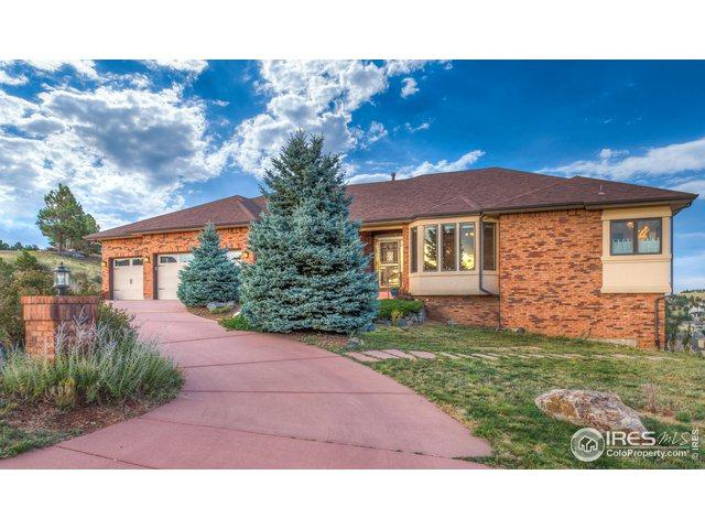 496 Buena Vista Rd, Golden, CO 80401 (MLS #878283) :: Tracy's Team