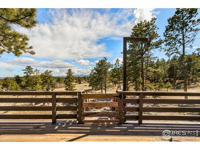 73 Manhead Mountain Dr, Livermore, CO 80536 (MLS #878372) :: Kittle Real Estate