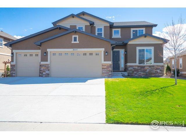 8445 Blackwood Dr, Windsor, CO 80550 (MLS #878396) :: Downtown Real Estate Partners