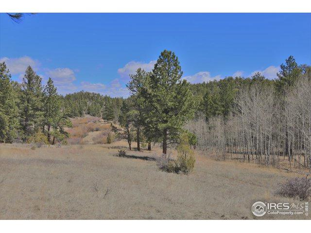 0 Elk Park Rd, Red Feather Lakes, CO 80545 (MLS #878590) :: Sarah Tyler Homes