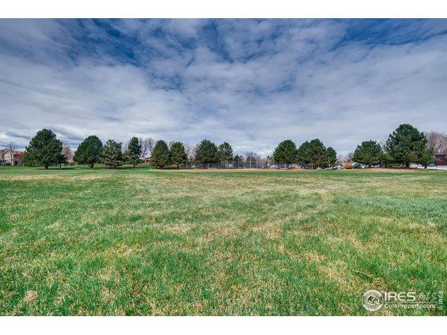 11791 Gray Way, Westminster, CO 80020 (MLS #879048) :: The Sam Biller Home Team