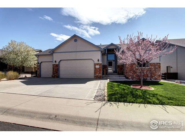 2134 Nucla Ave, Loveland, CO 80538 (MLS #879155) :: Downtown Real Estate Partners