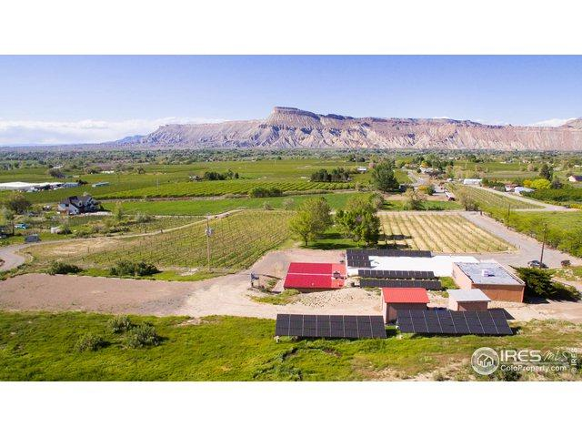 3553 E Rd, Palisade, CO 81526 (MLS #880127) :: 8z Real Estate