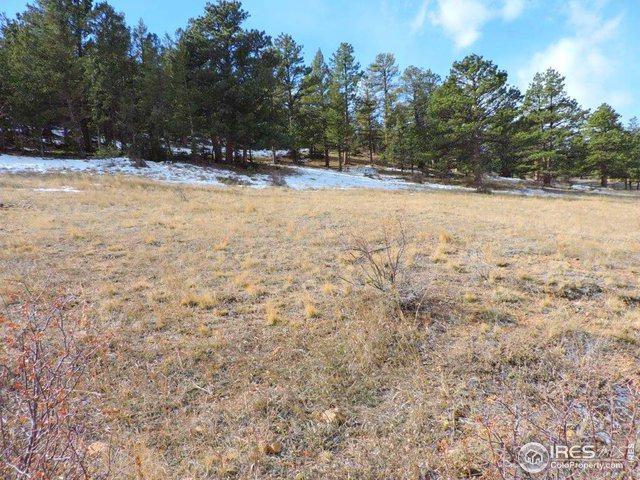 0 Cherokee Ct, Estes Park, CO 80517 (MLS #880911) :: 8z Real Estate