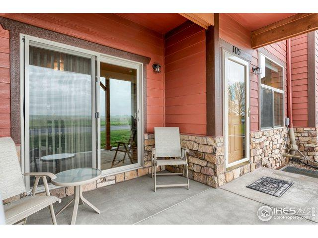 195 Carina Cir #105, Loveland, CO 80537 (MLS #881039) :: Sarah Tyler Homes