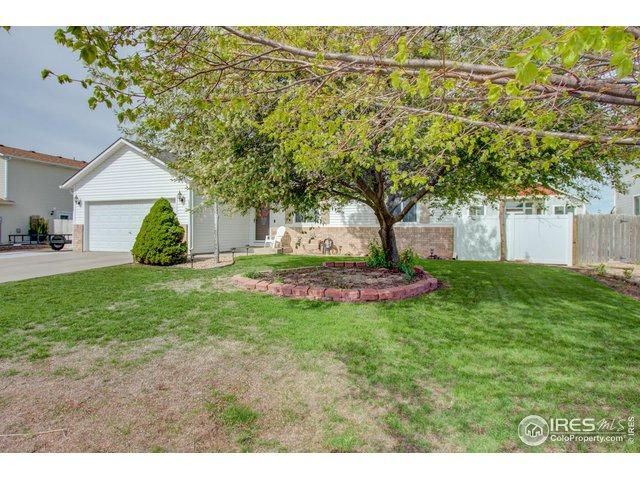 623 Alpine Ave, Ault, CO 80610 (MLS #881723) :: 8z Real Estate