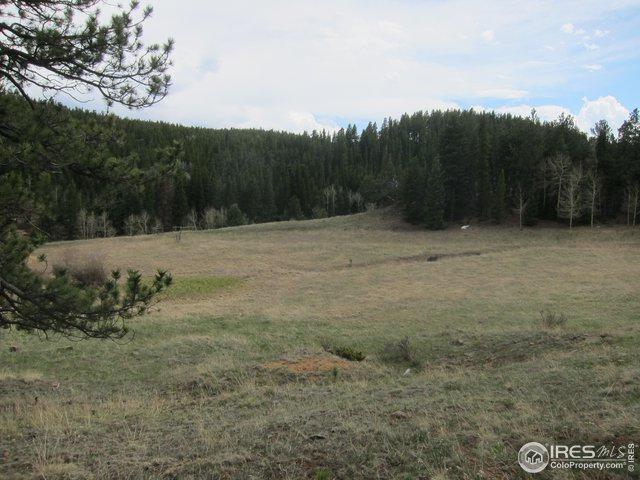 515 Bigbee High Rd, Ward, CO 80481 (MLS #881802) :: 8z Real Estate
