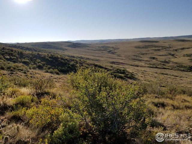 5520 Running Water Ranch Rd, Red Feather Lakes, CO 80545 (MLS #881925) :: 8z Real Estate