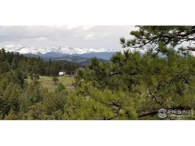 1352 Gross Dam Rd, Golden, CO 80401 (MLS #881965) :: 8z Real Estate