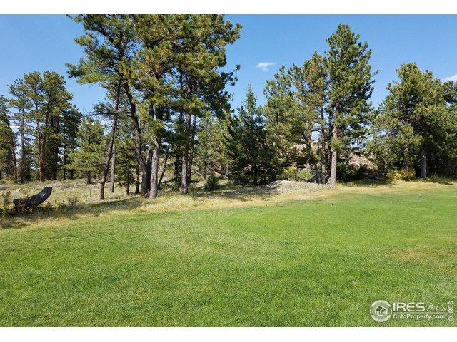 2921 Fox Acres Dr, Red Feather Lakes, CO 80545 (MLS #881984) :: June's Team