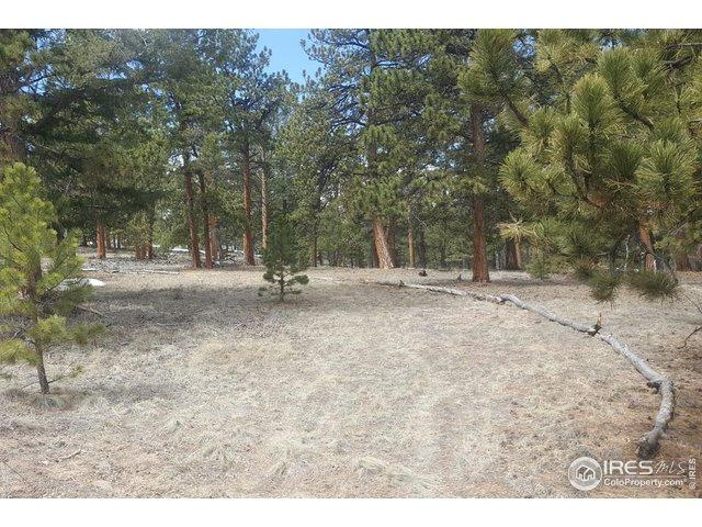 1176 Brahma Ct, Hartsel, CO 80449 (MLS #882094) :: 8z Real Estate