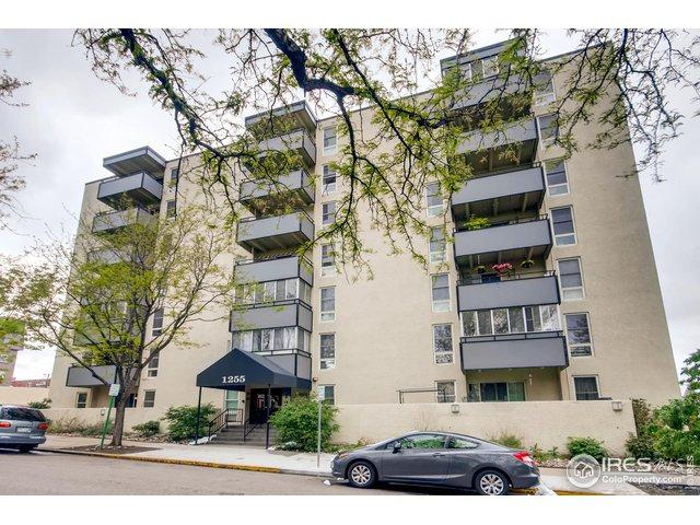 1255 N Ogden St #202, Denver, CO 80218 (#882169) :: The Peak Properties Group
