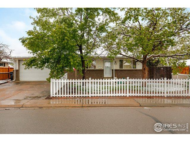 317 N 13th Ave, Brighton, CO 80601 (MLS #882419) :: Kittle Real Estate