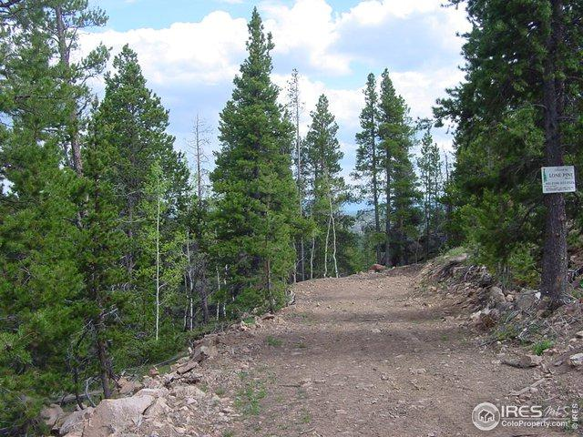 66 Dogrib Ct, Red Feather Lakes, CO 80545 (MLS #882501) :: Kittle Real Estate