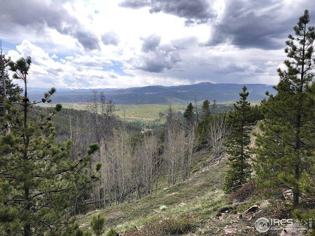 915 Flathead Dr, Red Feather Lakes, CO 80545 (MLS #883552) :: Kittle Real Estate