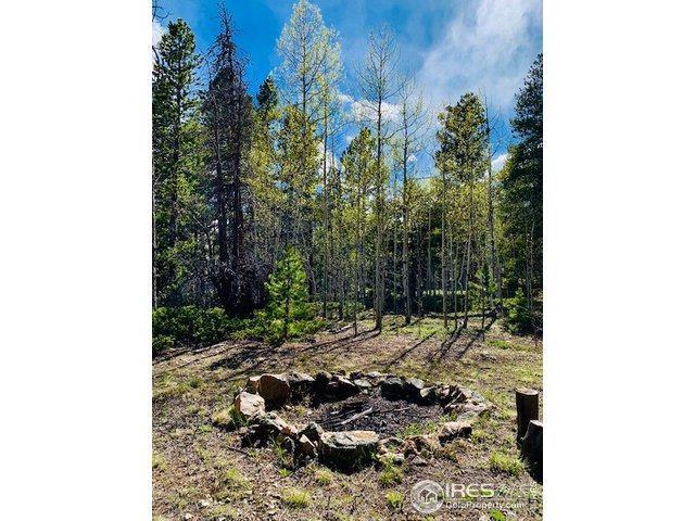 Creekwood Trl, Black Hawk, CO 80422 (#883708) :: The Peak Properties Group