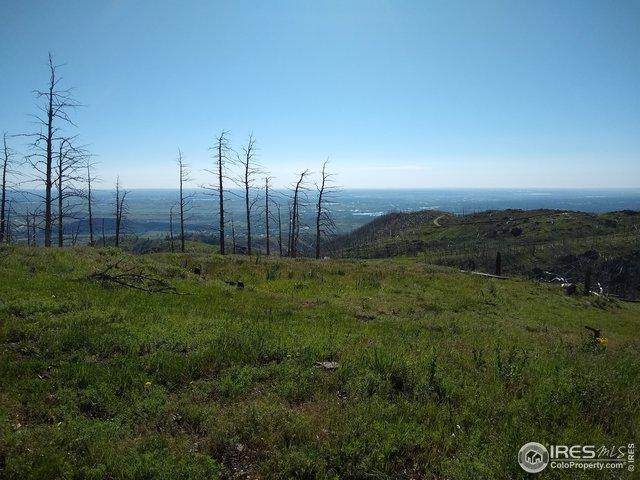 1600 Whale Rock Rd, Bellvue, CO 80512 (MLS #883885) :: Downtown Real Estate Partners