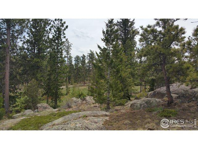 2821 Fox Acres Dr, Red Feather Lakes, CO 80545 (MLS #884148) :: 8z Real Estate