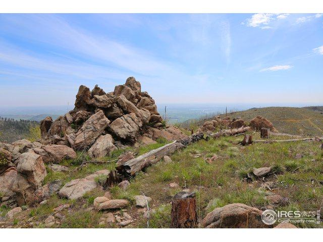1268 Walking Wind Dr, Bellvue, CO 80512 (MLS #884218) :: Downtown Real Estate Partners