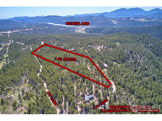 223 County Road 128N, Nederland, CO 80466 (MLS #884360) :: Tracy's Team