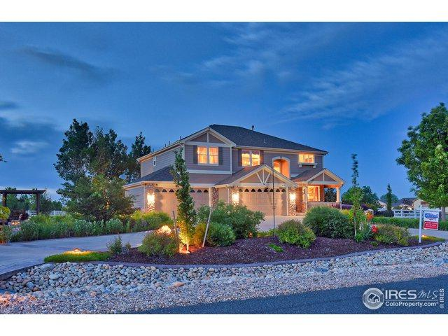 8675 E 162nd Ave, Brighton, CO 80602 (MLS #884478) :: Hub Real Estate