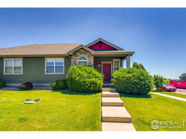 3626 Palermo Ave, Evans, CO 80620 (MLS #884535) :: Tracy's Team