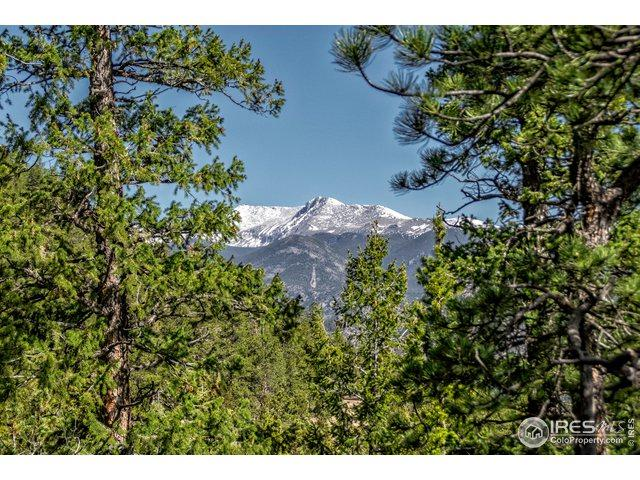 Hummingbird Dr Lot 48, Estes Park, CO 80517 (MLS #884786) :: 8z Real Estate