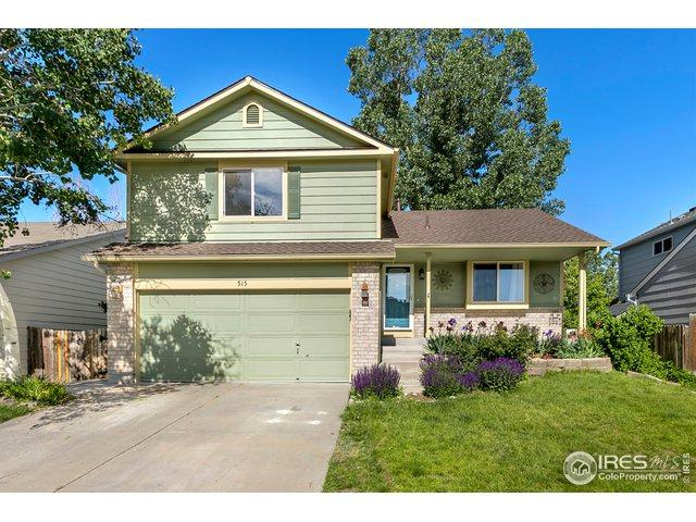 515 S 24th Ave, Brighton, CO 80601 (MLS #884802) :: Hub Real Estate