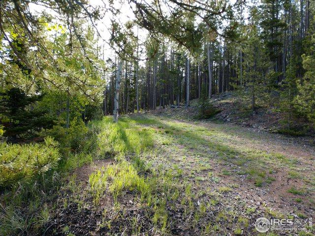 518 Huron Rd, Red Feather Lakes, CO 80545 (MLS #884967) :: 8z Real Estate