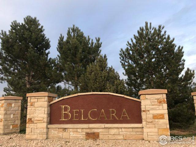 1060 Berthoud Peak Dr, Berthoud, CO 80513 (MLS #885013) :: June's Team
