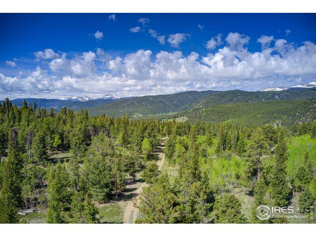 Tbd County Rd 103, Nederland, CO 80466 (MLS #885099) :: Tracy's Team