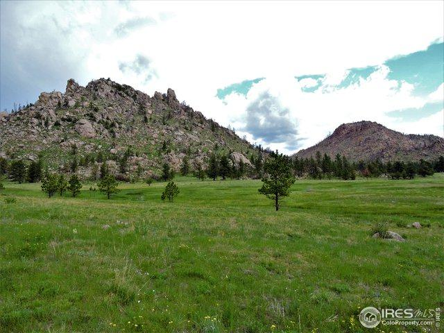 1 W Greyrock Meadow, Laporte, CO 80535 (MLS #885219) :: J2 Real Estate Group at Remax Alliance
