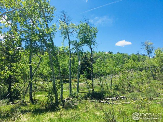 27 Choctaw Dr, Red Feather Lakes, CO 80545 (MLS #885417) :: The Bernardi Group